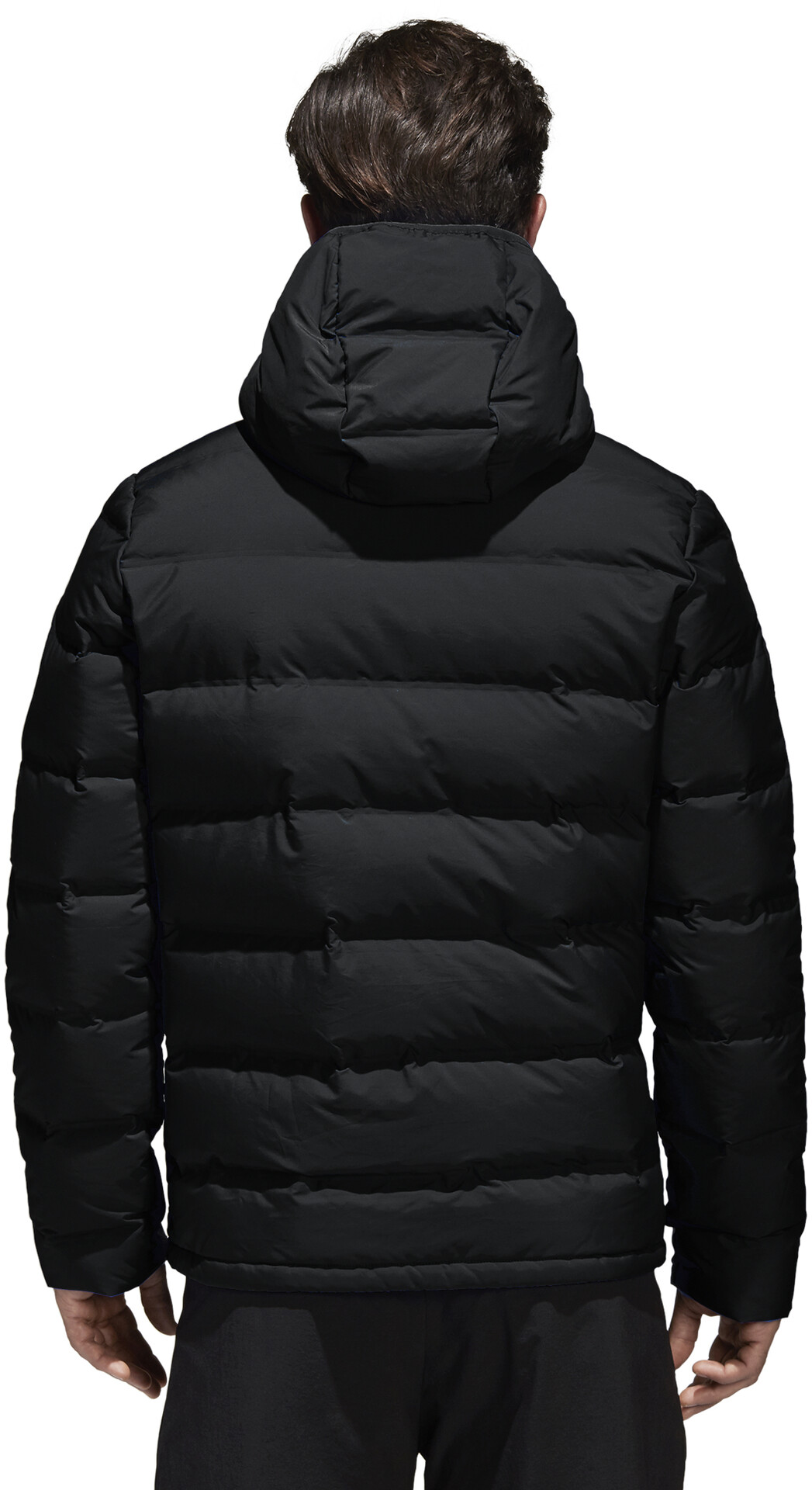 adidas TERREX Helionic Dunjakke Herrer, black
